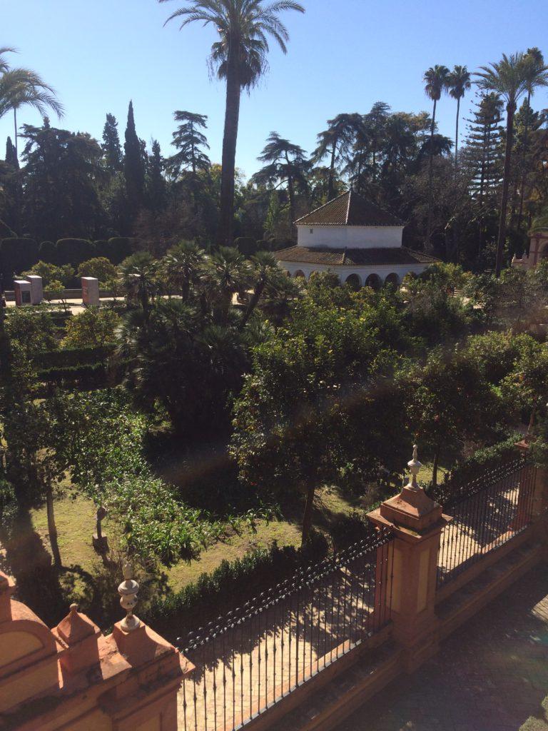 seville 2019 (1)