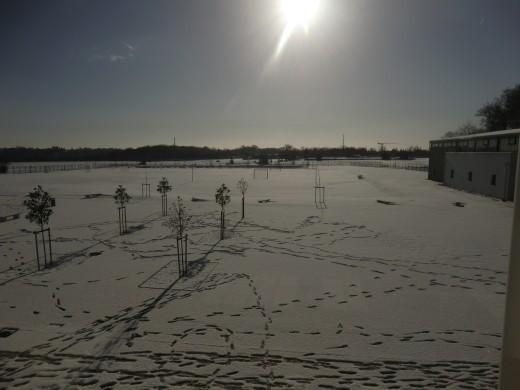 Rey sous la neige 5